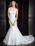 Bridal Gown Ella Rosa BE332 Private Label by G